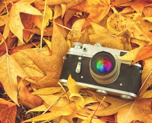 Fall 2017 Photo Contest by Remke Industries